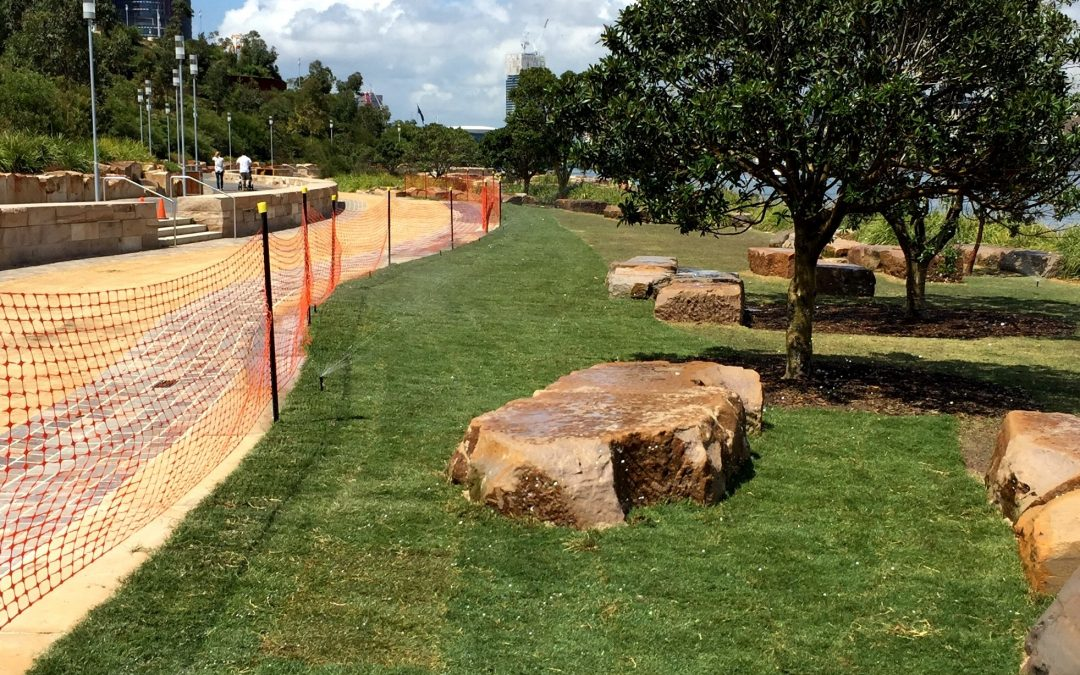 Solid Ground Landscaping Enhancing One of Sydney's Great Parks