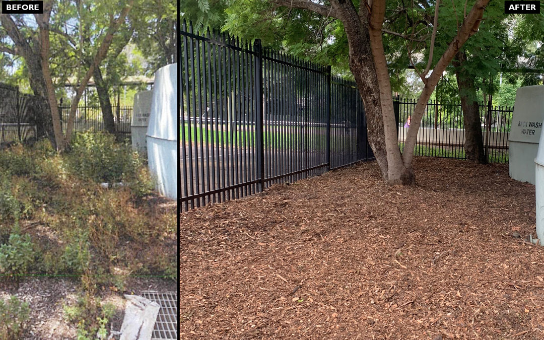 MULCHING makes a difference!